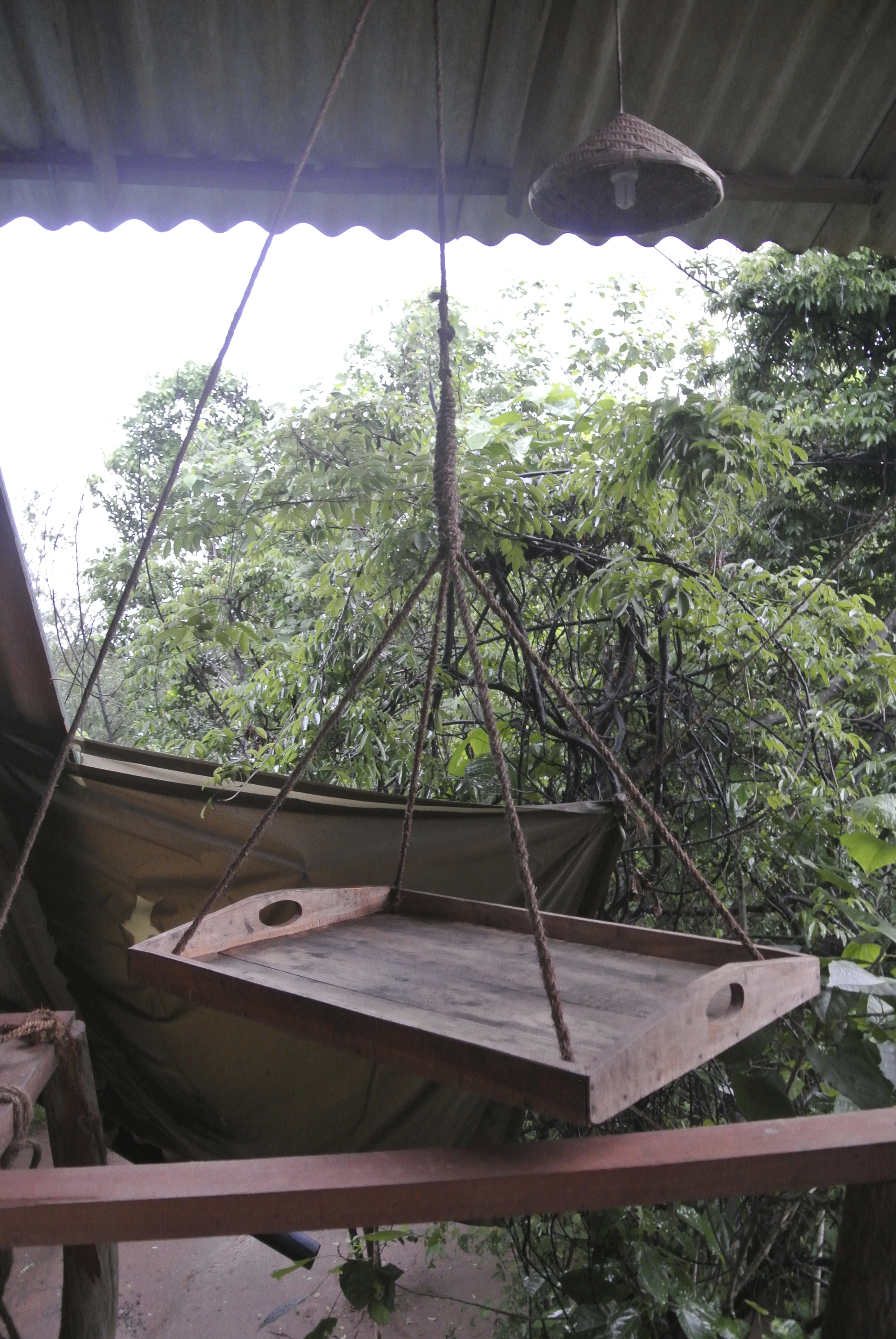 Treehouse my india encounters for Exterior dumbwaiter